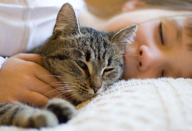 gatto-che-dorme-con-bambino