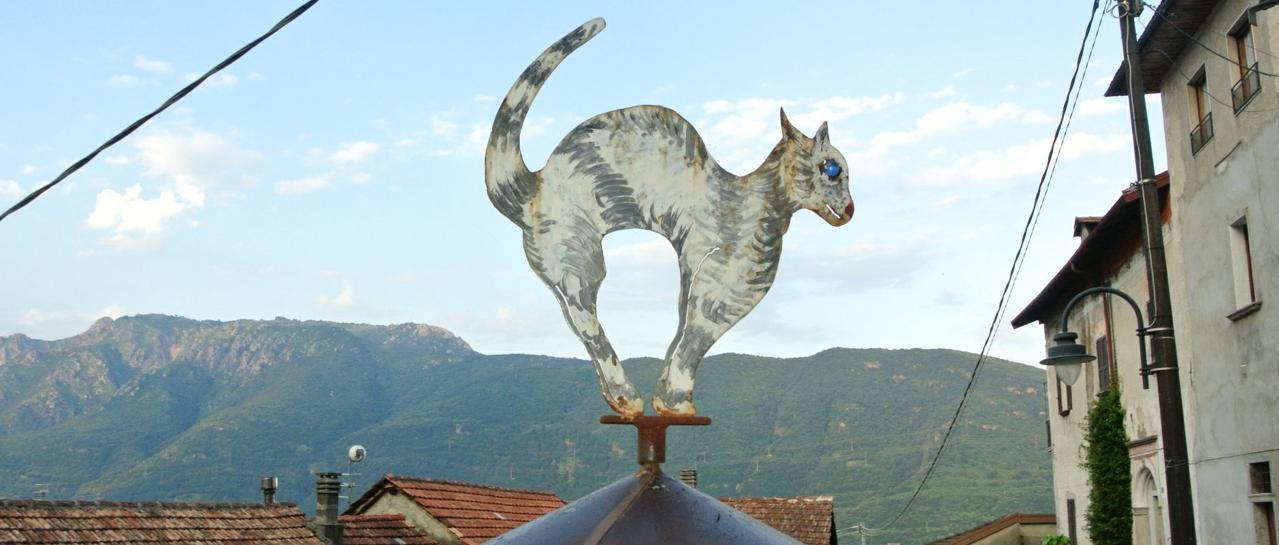 scultura sui gatti