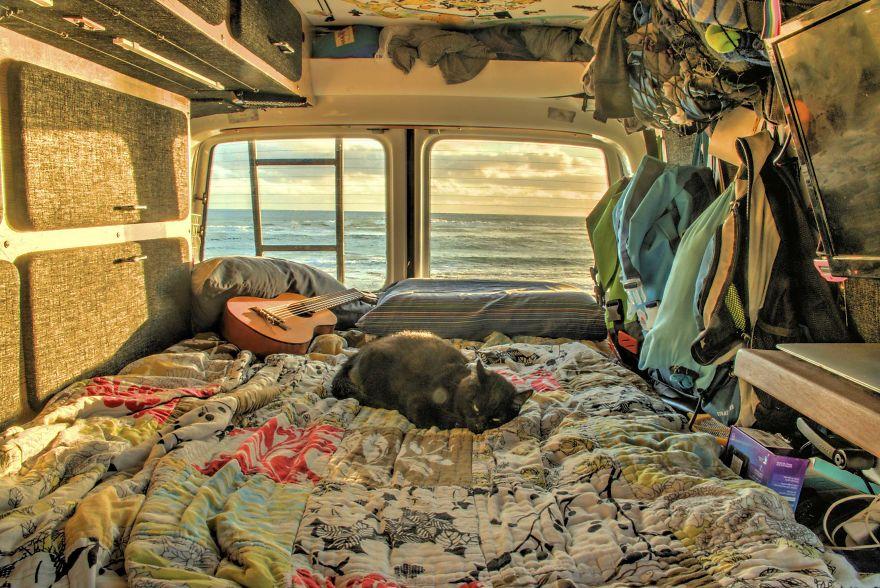il gatto riposa nel camper