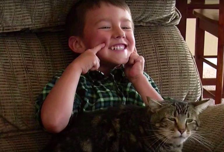 il-gatto-tara-feeling-con-primogenito