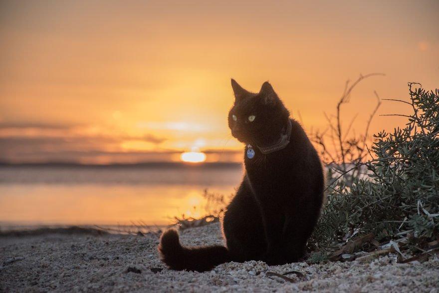 durante un tramonto