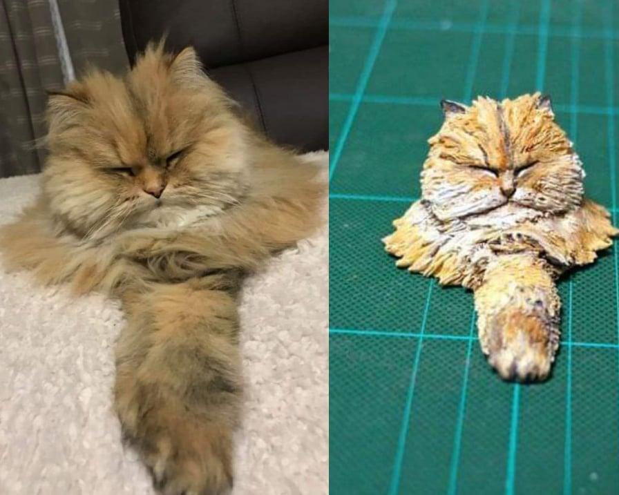 il gatto peloso