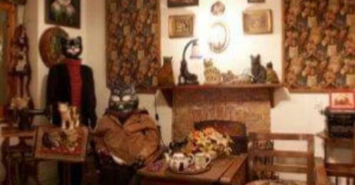 museo gatti kattenkabinet
