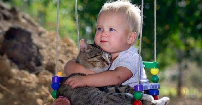 gatti-e-bambini-possono-convivere