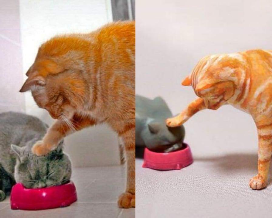 il gatto dispettoso