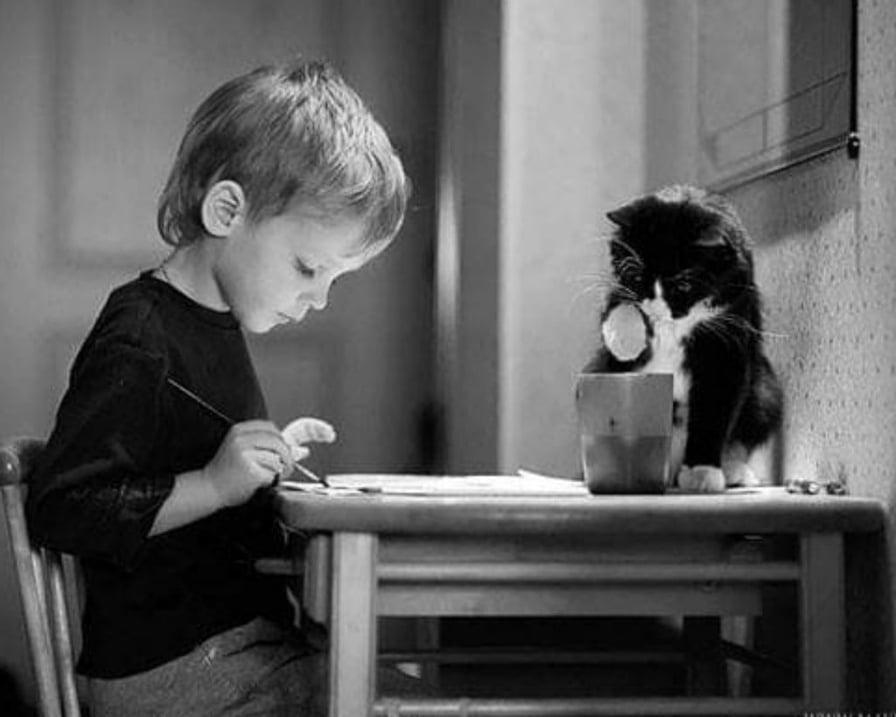 il-gatto-pittura-con-il-bambino