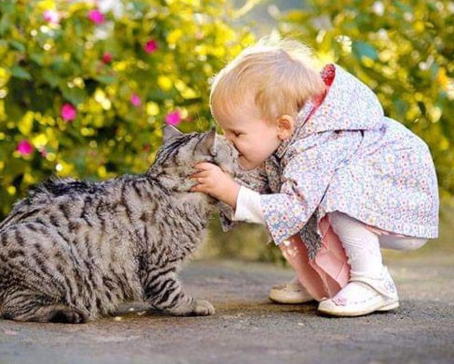 la-bambina-bacia-il-gatto