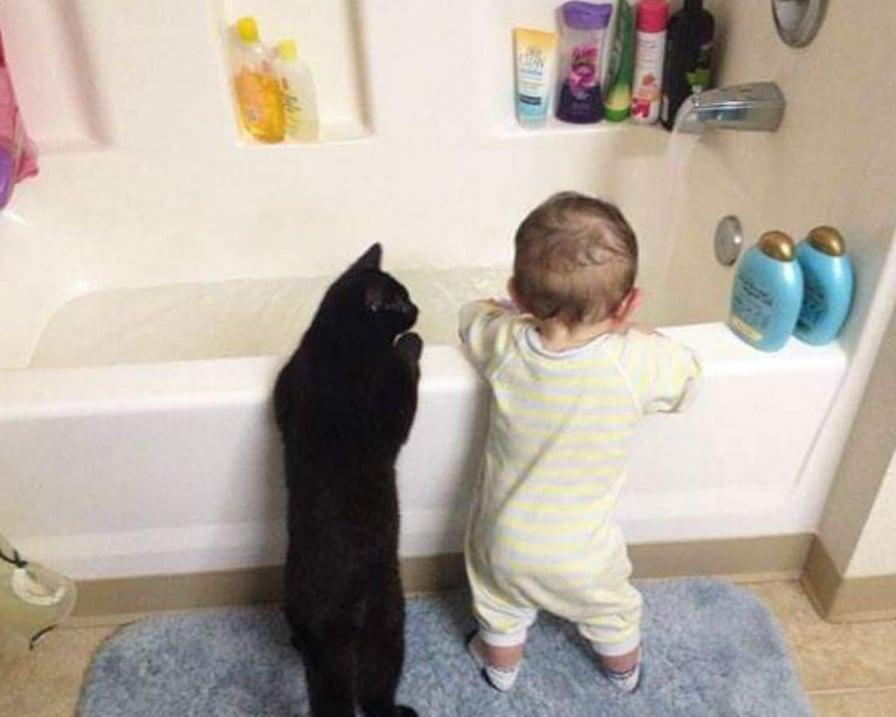 il-gatto-e-il-bambino-in-vasca