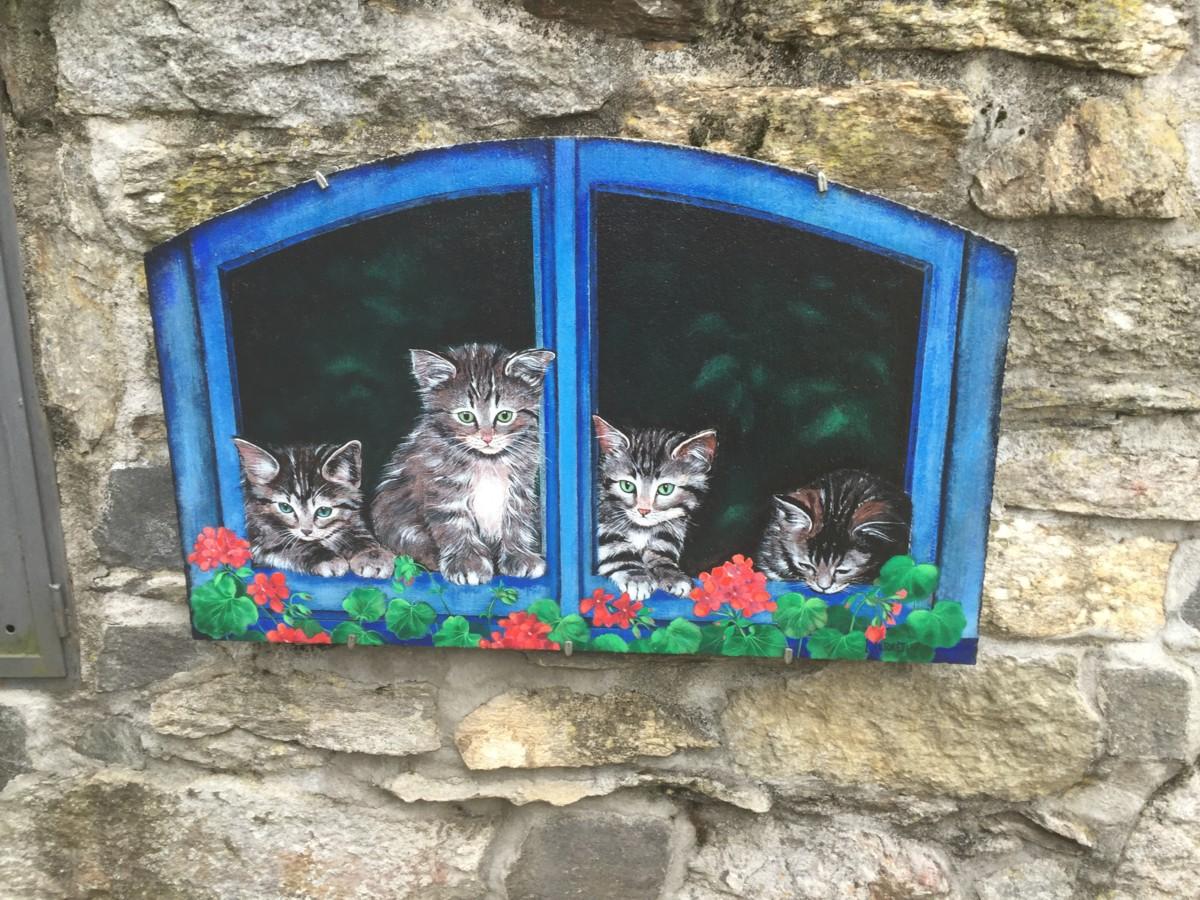 dipinto sui gatti a brolo