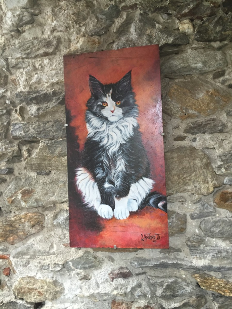 gatto dipinto su tegola brolo