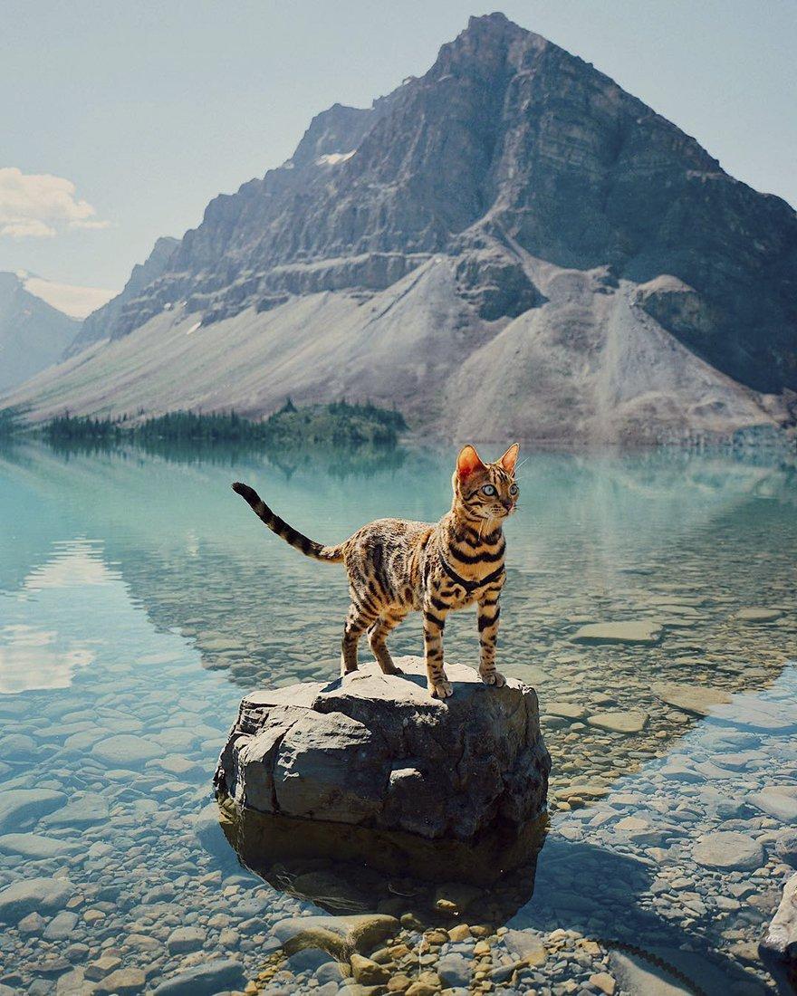 suki sulla roccia nel lago