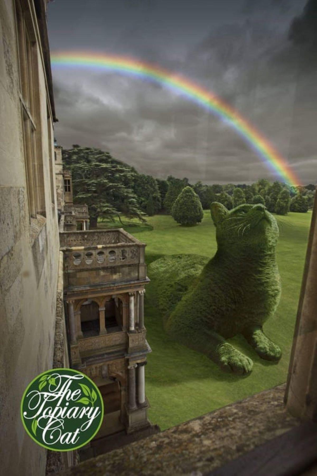 dipinto-gatto-con-arcobaleno