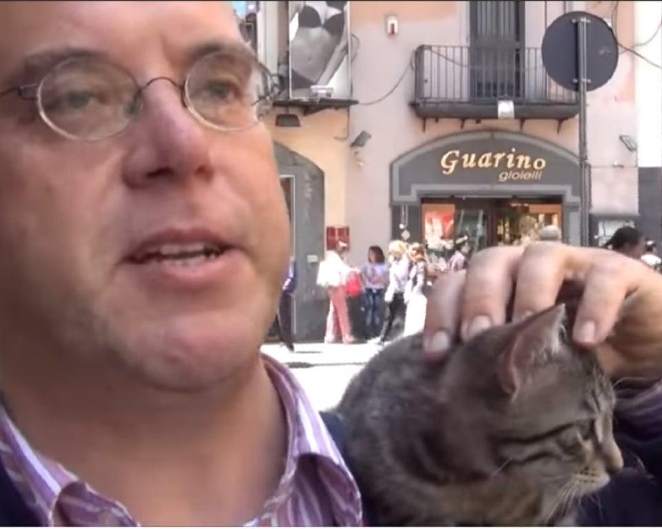 il gattino sulla spalla