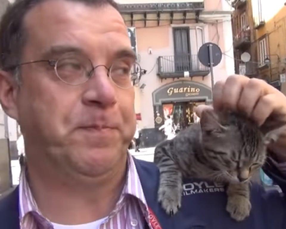 gattino e padrone inseparabili