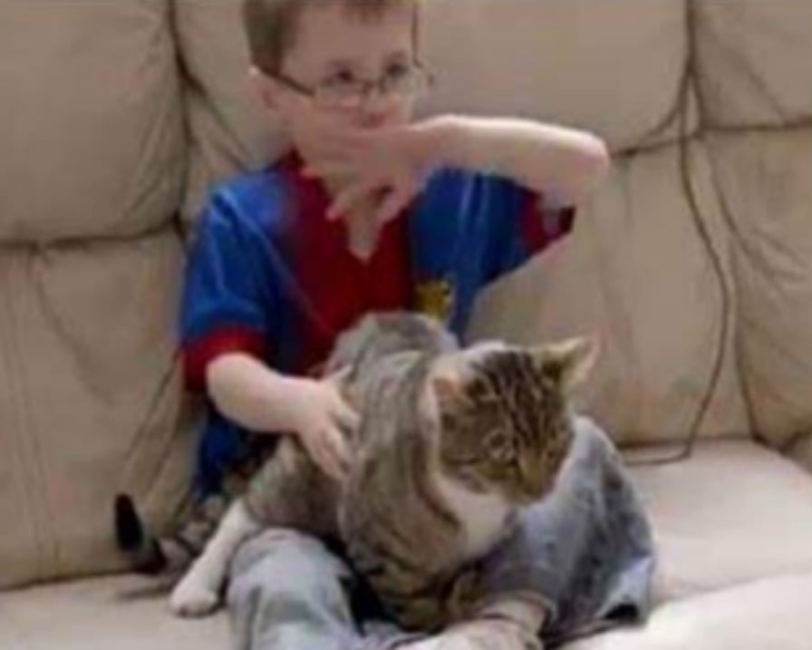 gatto protettore del bimbo