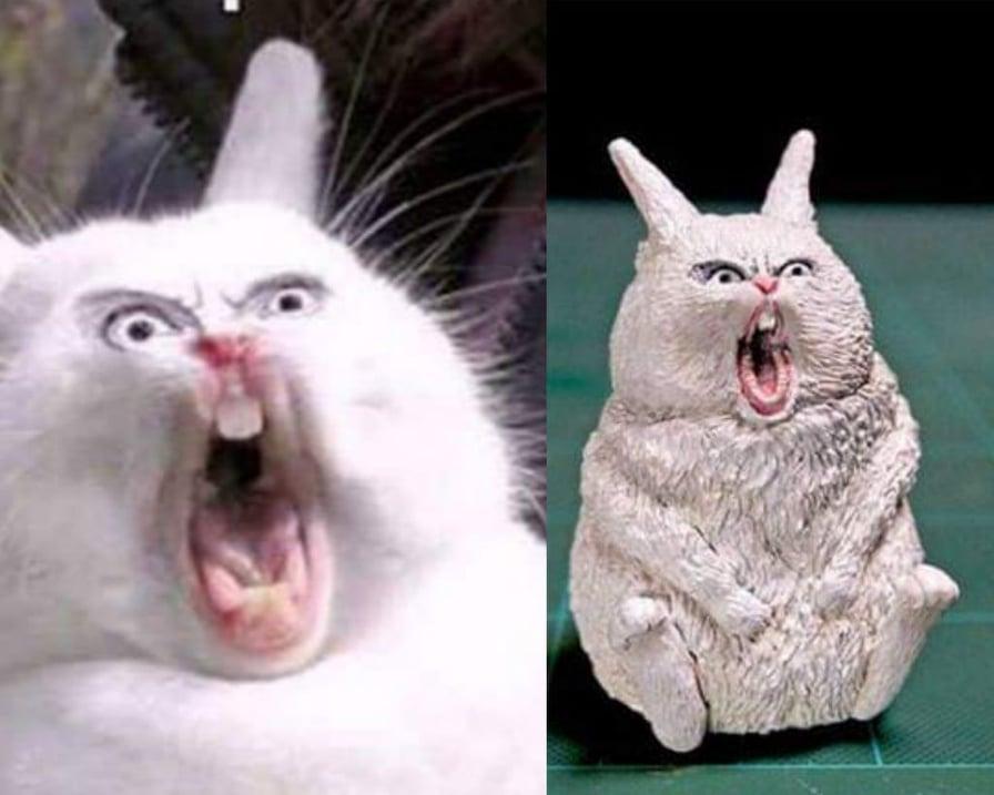 il coniglio spaventato
