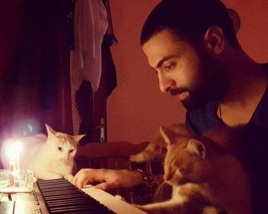 pianista-suona-insieme-ai-gatti