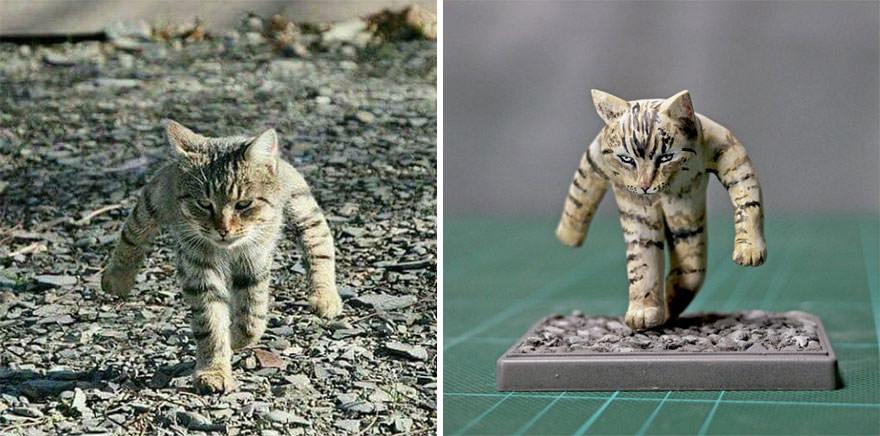 il gatto bullo
