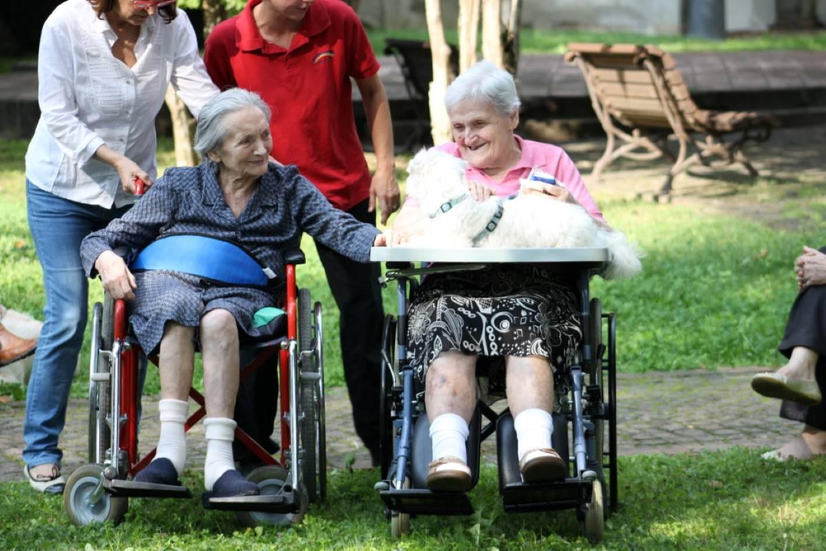 cane-e-persone-anziane
