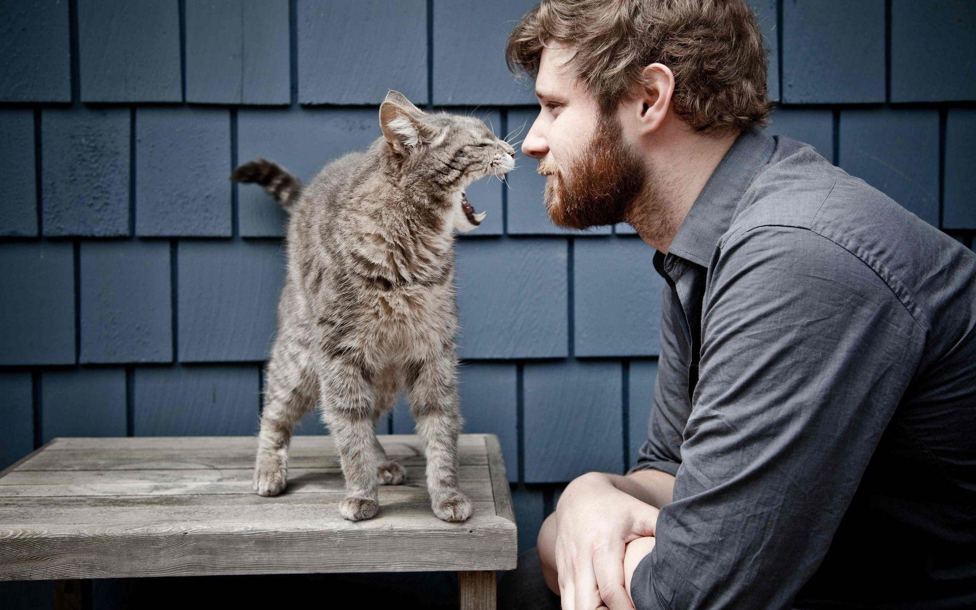 parlare-al-gatto