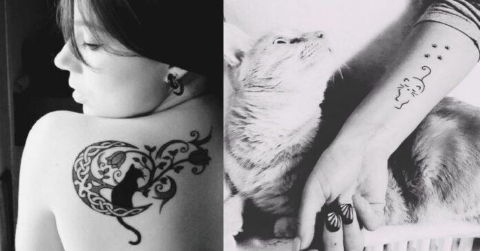gatti-e-tattoo