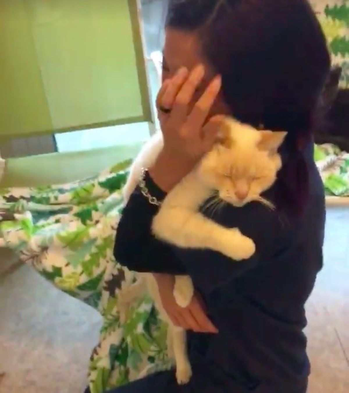 gatto-che-abbraccia-la-sua-proprietaria