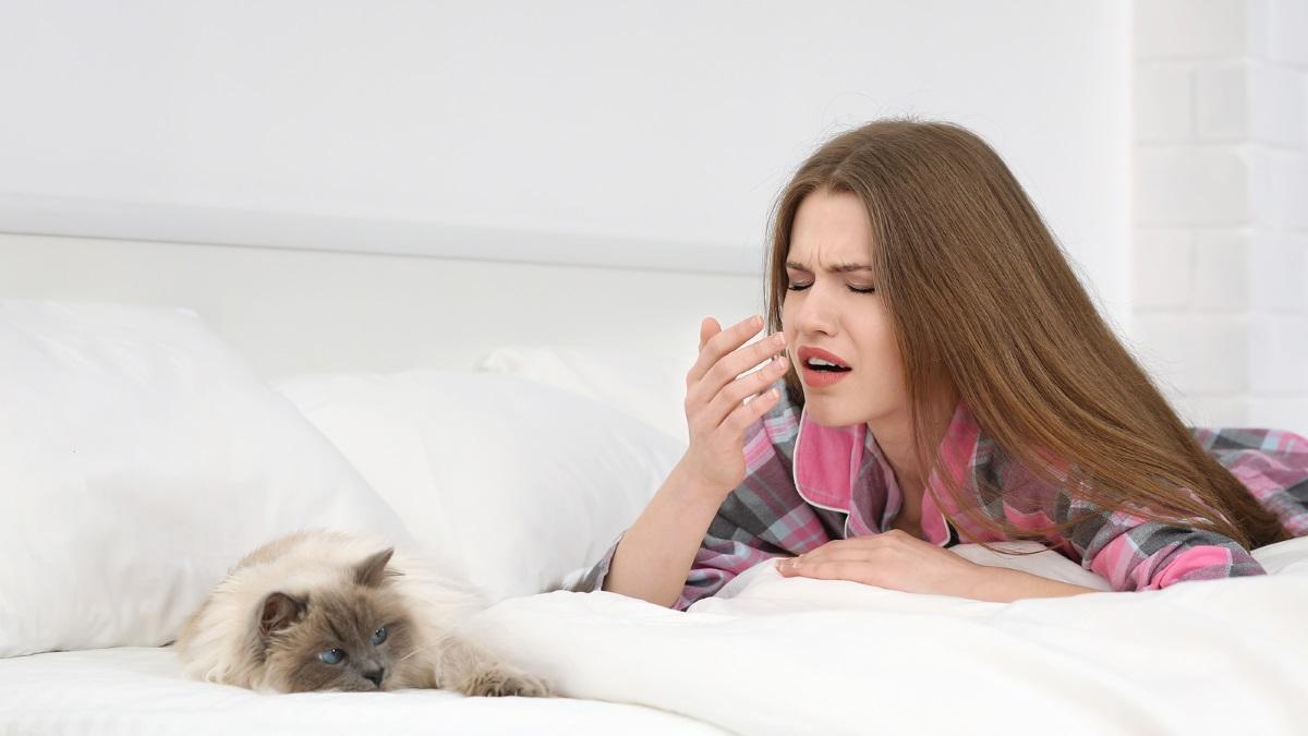 gatto-con-ragazza-che-starnuta