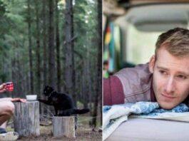 il gatto che viaggia in camper