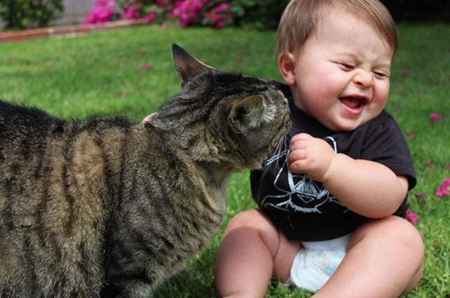gatti e bambini possono convivere