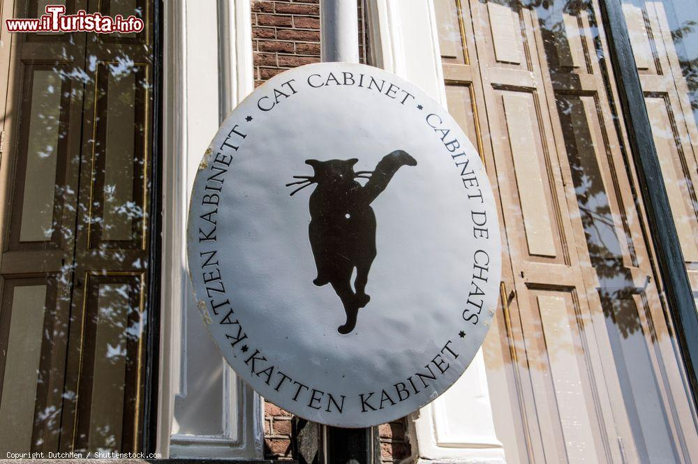 museo gatti amsterdam