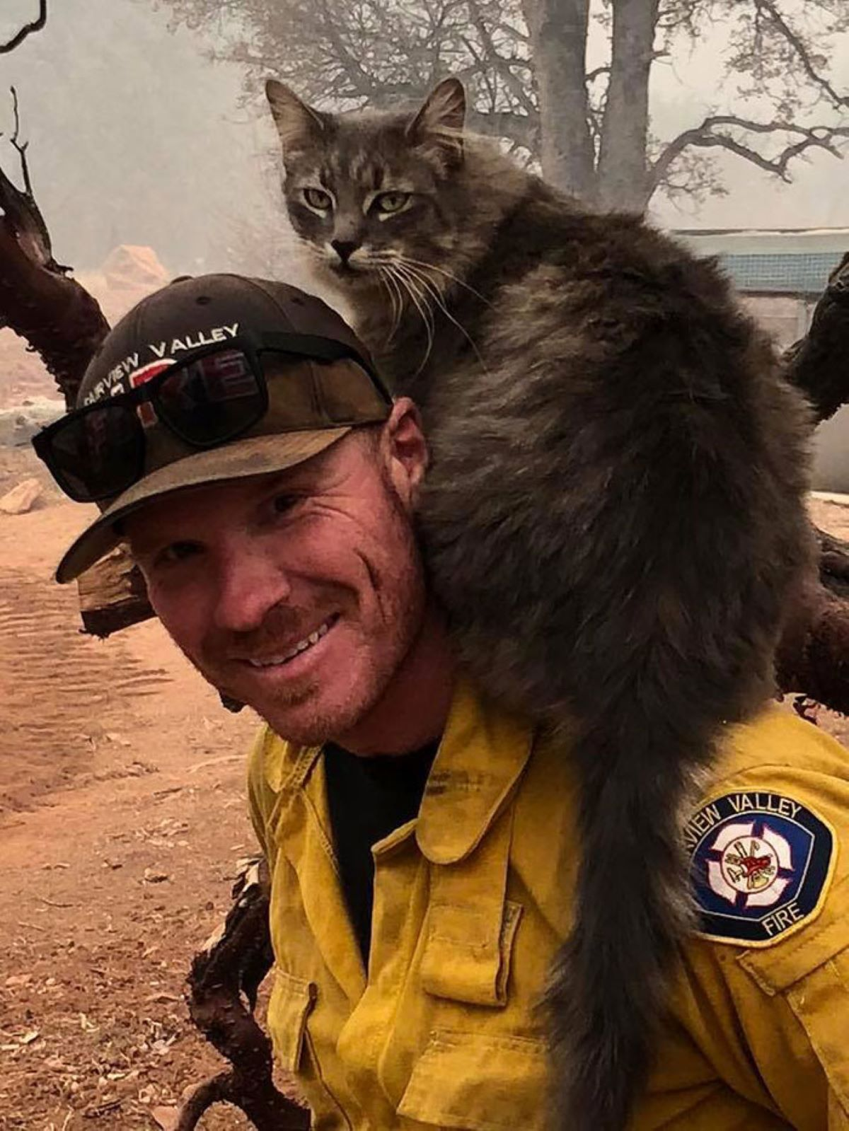gatta-sulle-spalle-del-pompiere
