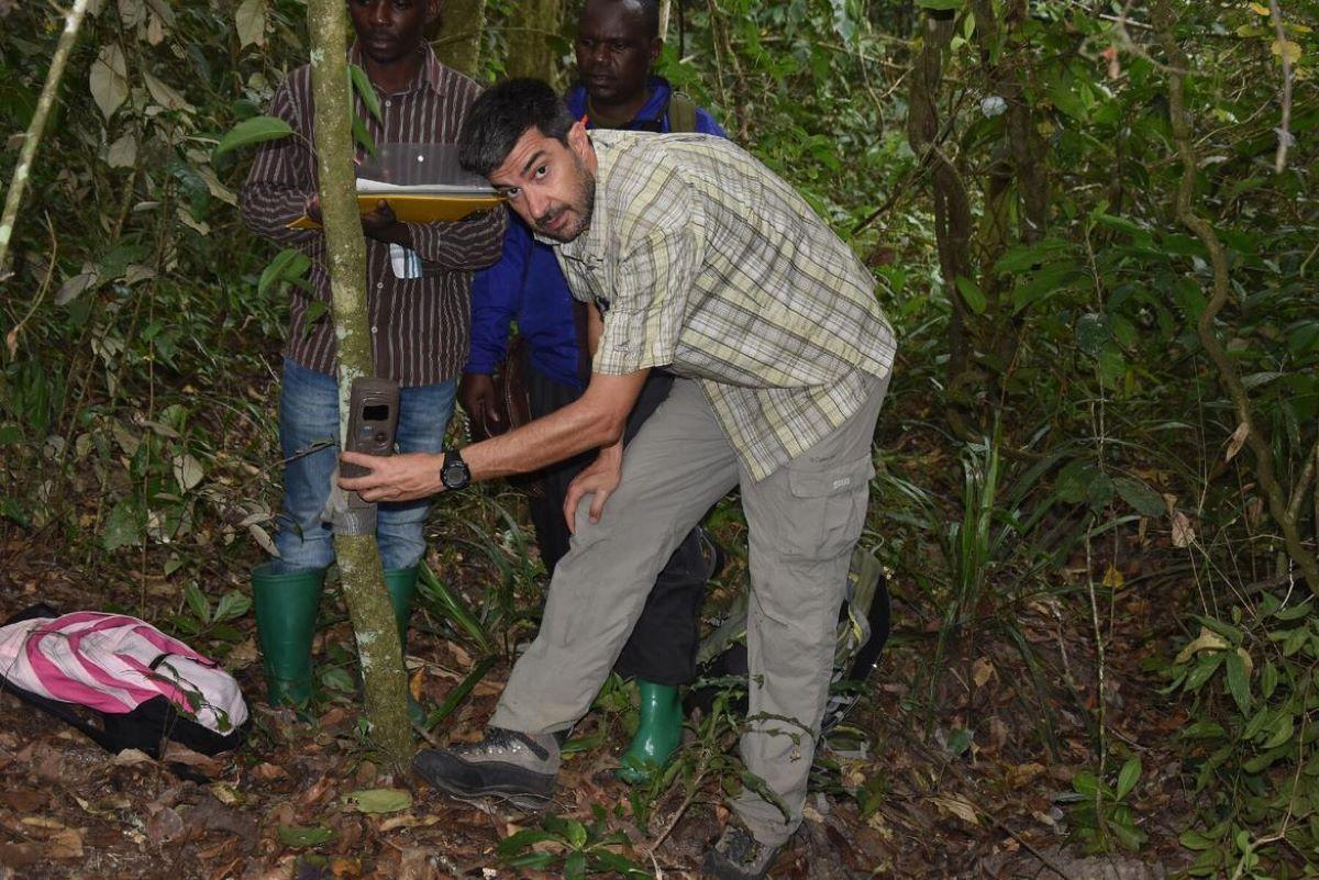ricercatore-nella-foresta