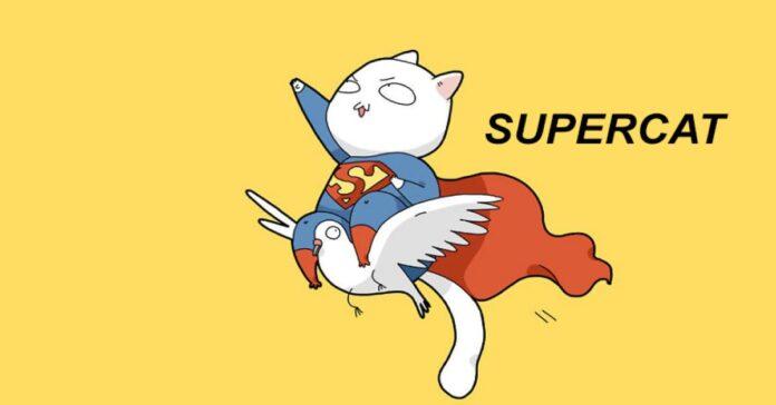 vivere-con-un-gatto-8-vignette-ce-lo-raccontano