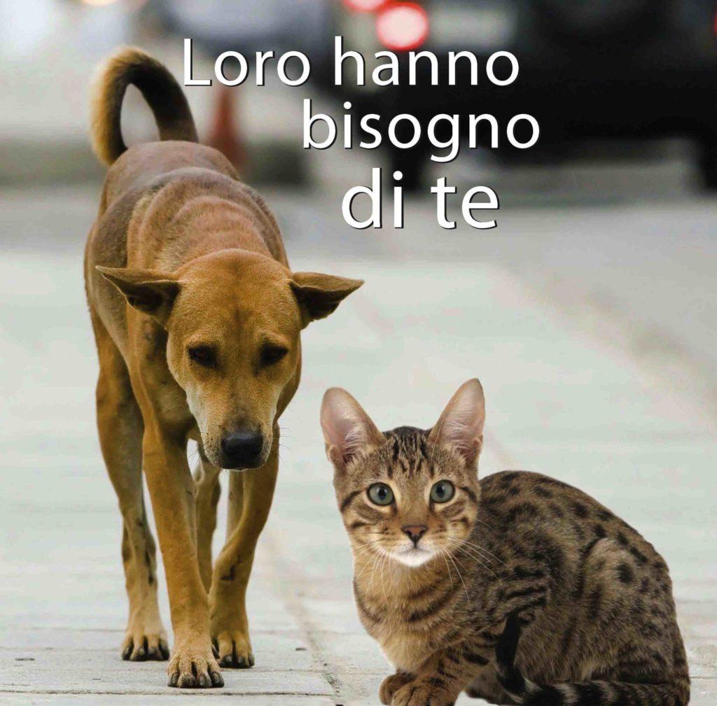 aiutiamo-gli-animali