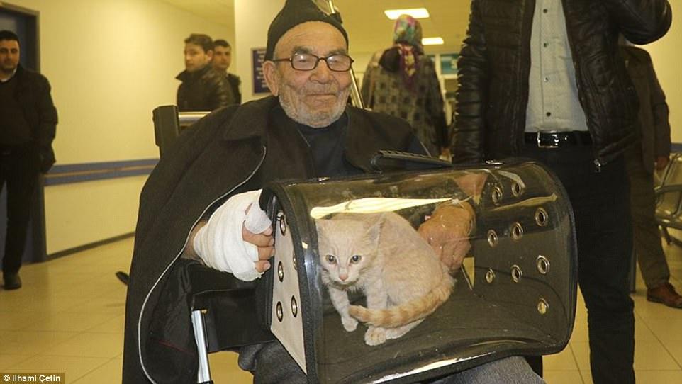anziano e gatto all'ospedale