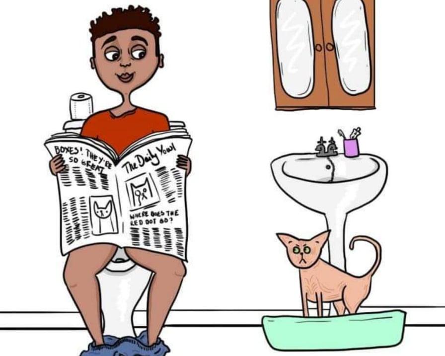 gatto-e-umano-in-bagno