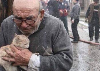 anziano e gatino salvi dalle fiamme