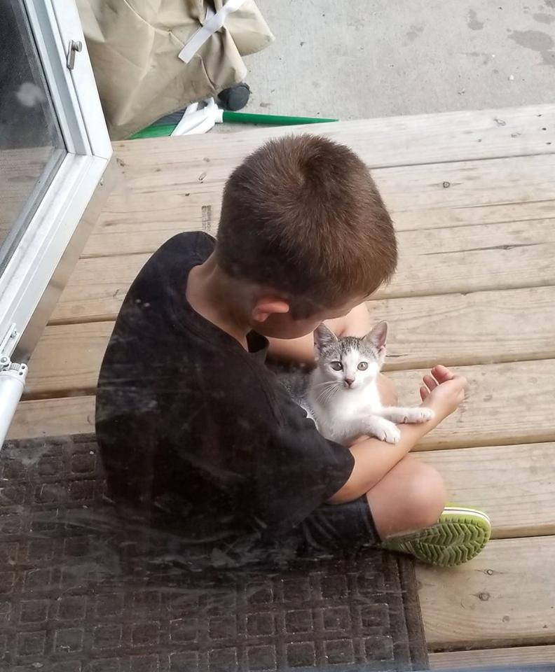 bambino e gattino