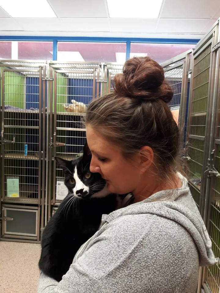 gatto e umana abbracciati