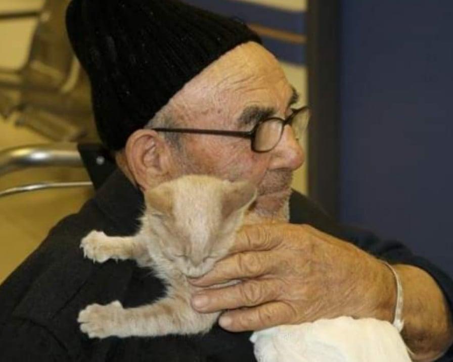 anziano stringe gattino