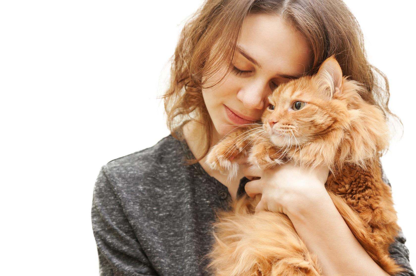 Gatto abbracciato alla padrona