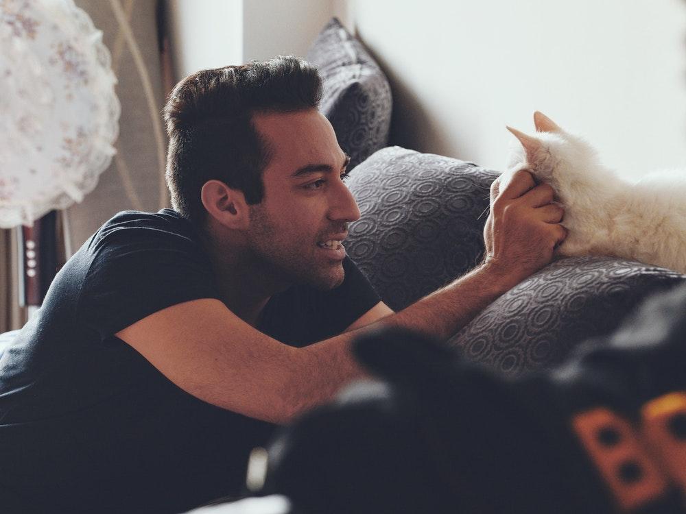 Gatto coccolato da un uomo