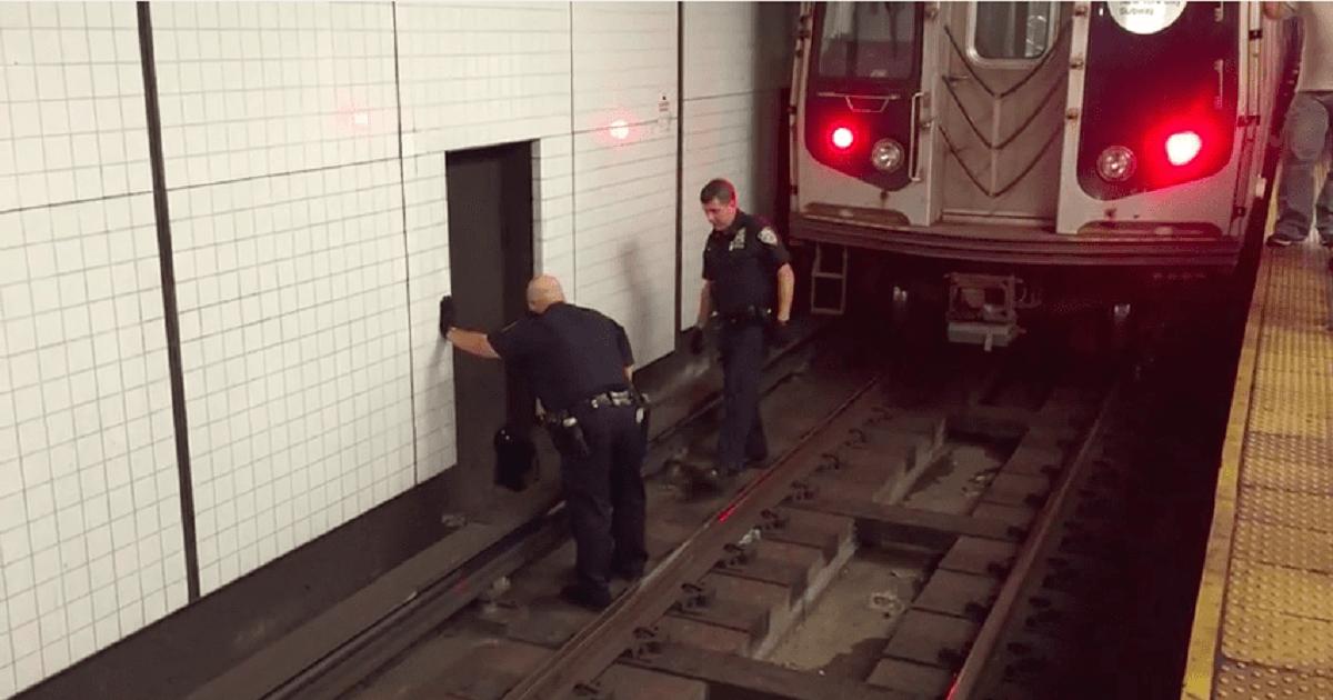 due poliziotti salvano gatto