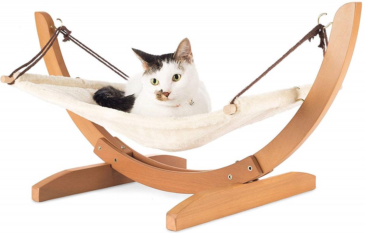 gatto su amaca sfondo bianco