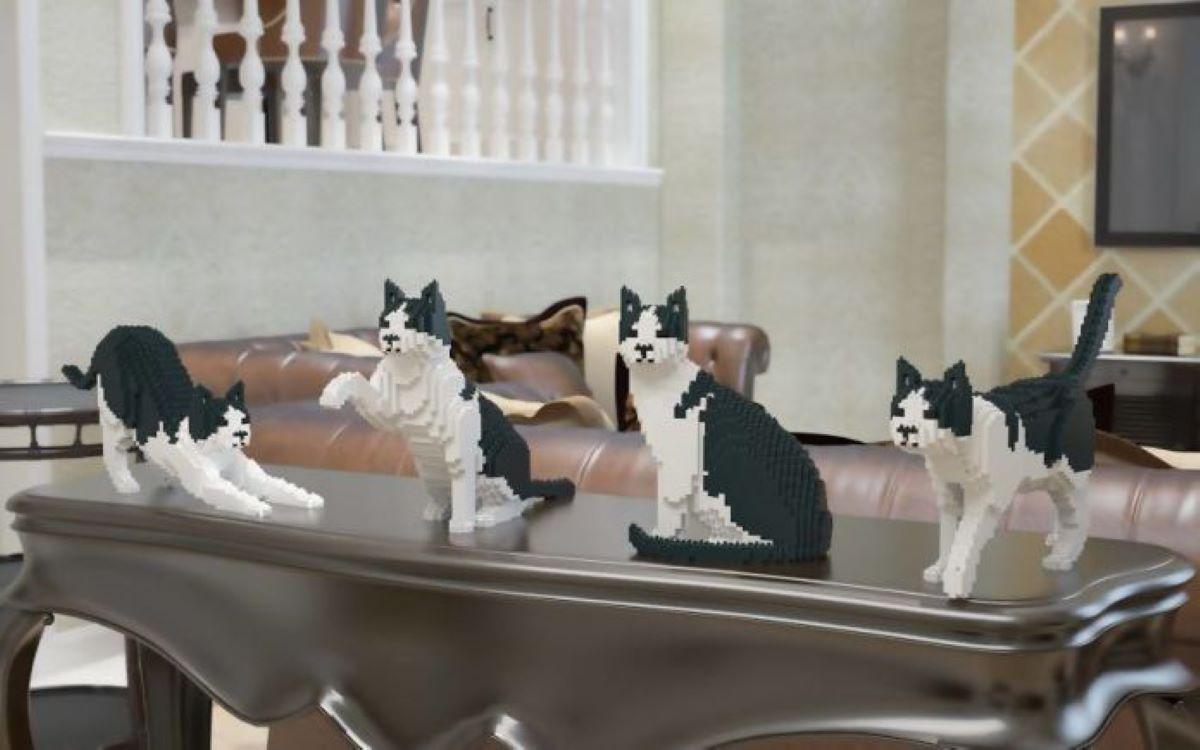 gatti-in-mattoncini