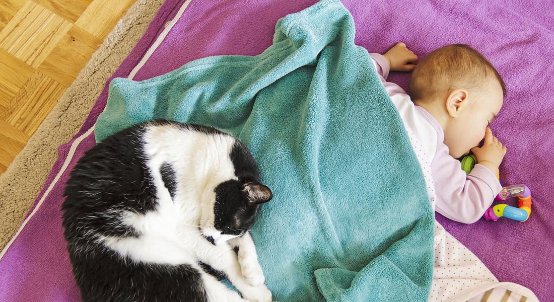 gatto-e-bambino-dormono