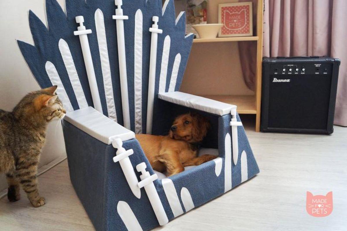 gatto-e-cane-su-trono