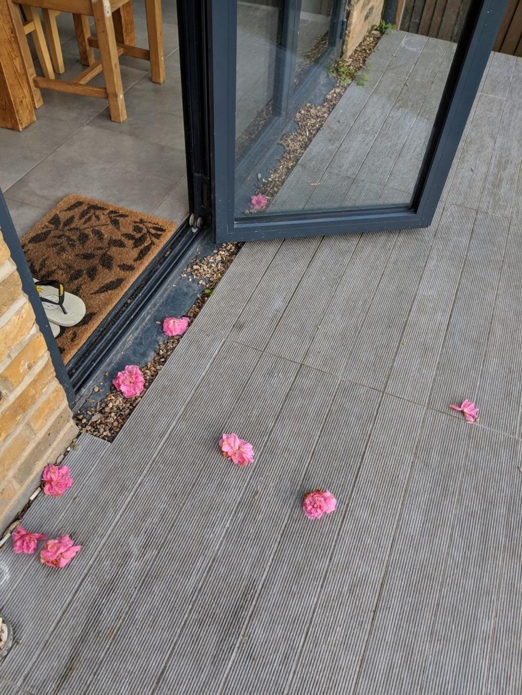 tappeto-di-fiori