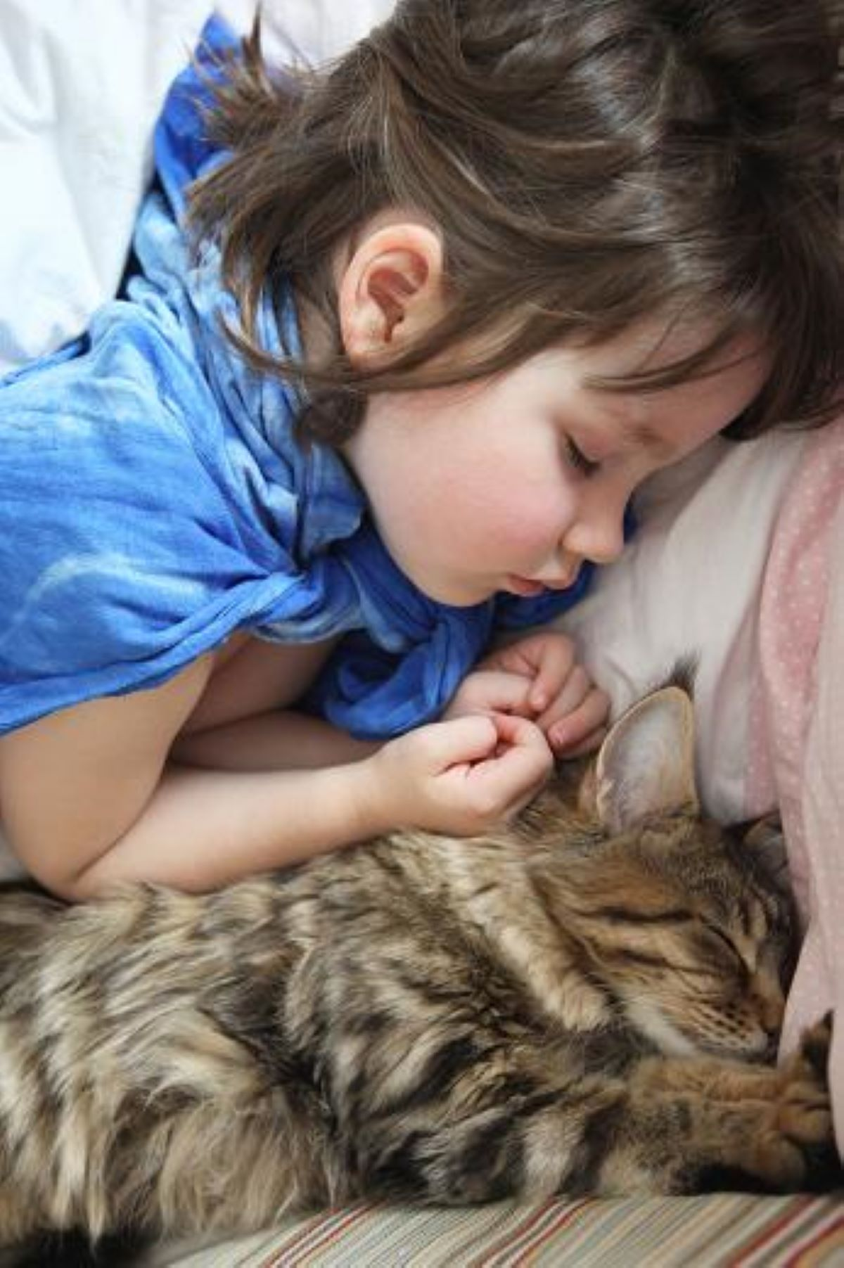 gatta-che-dorme-con-bambina