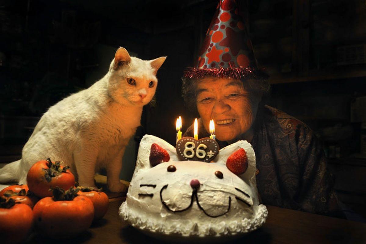 donna-e-gatto-con-torta-di-compleanno